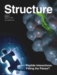 Structure cover